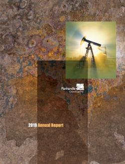2019 Annual Report Cover Art